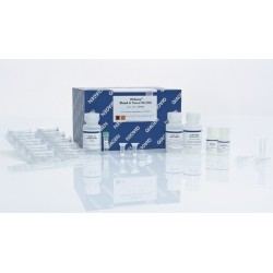 DNeasy Blood & Tissue Kit (50)